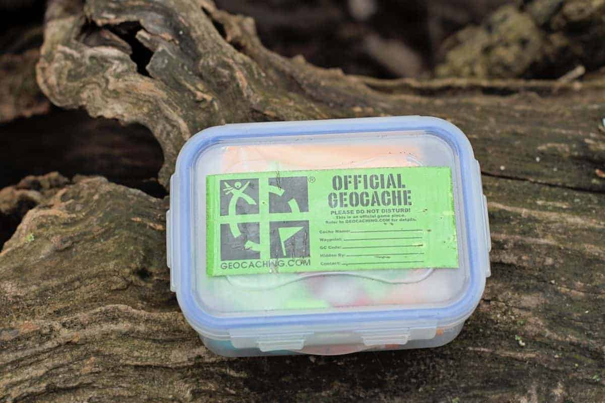 Geocaching With Kids For Beginners Nature Treasure Hunt