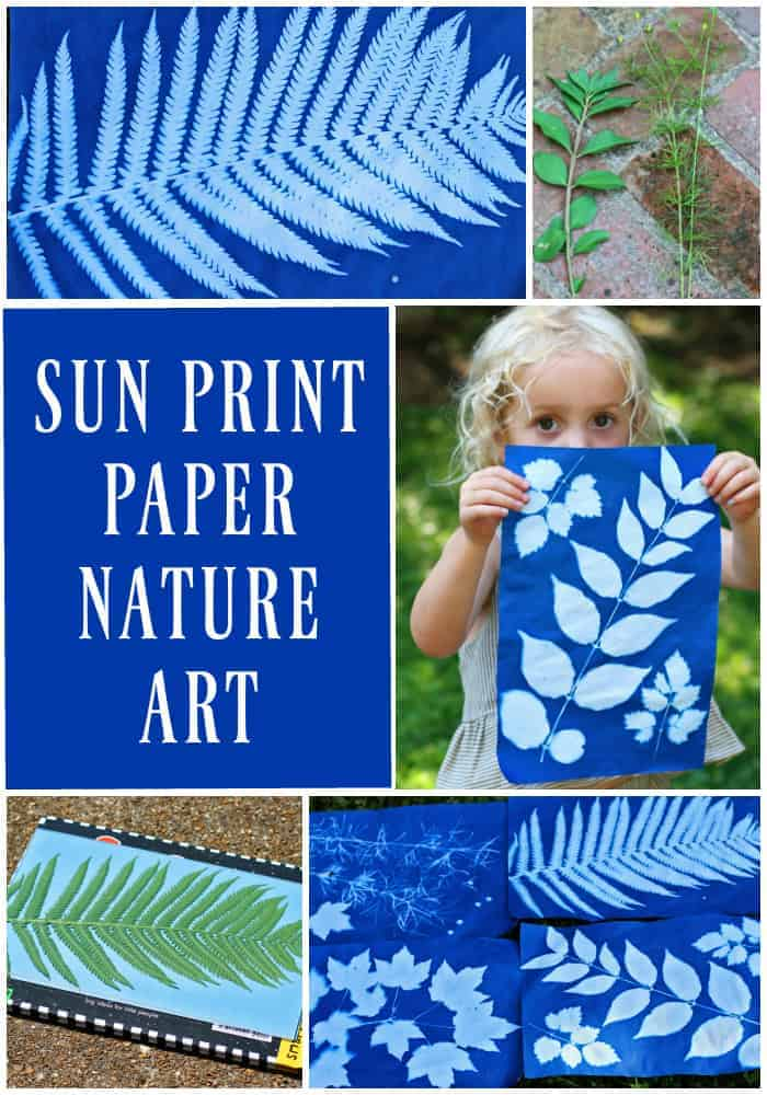 Making Sun Print Nature Art With Kids Run Wild My Child