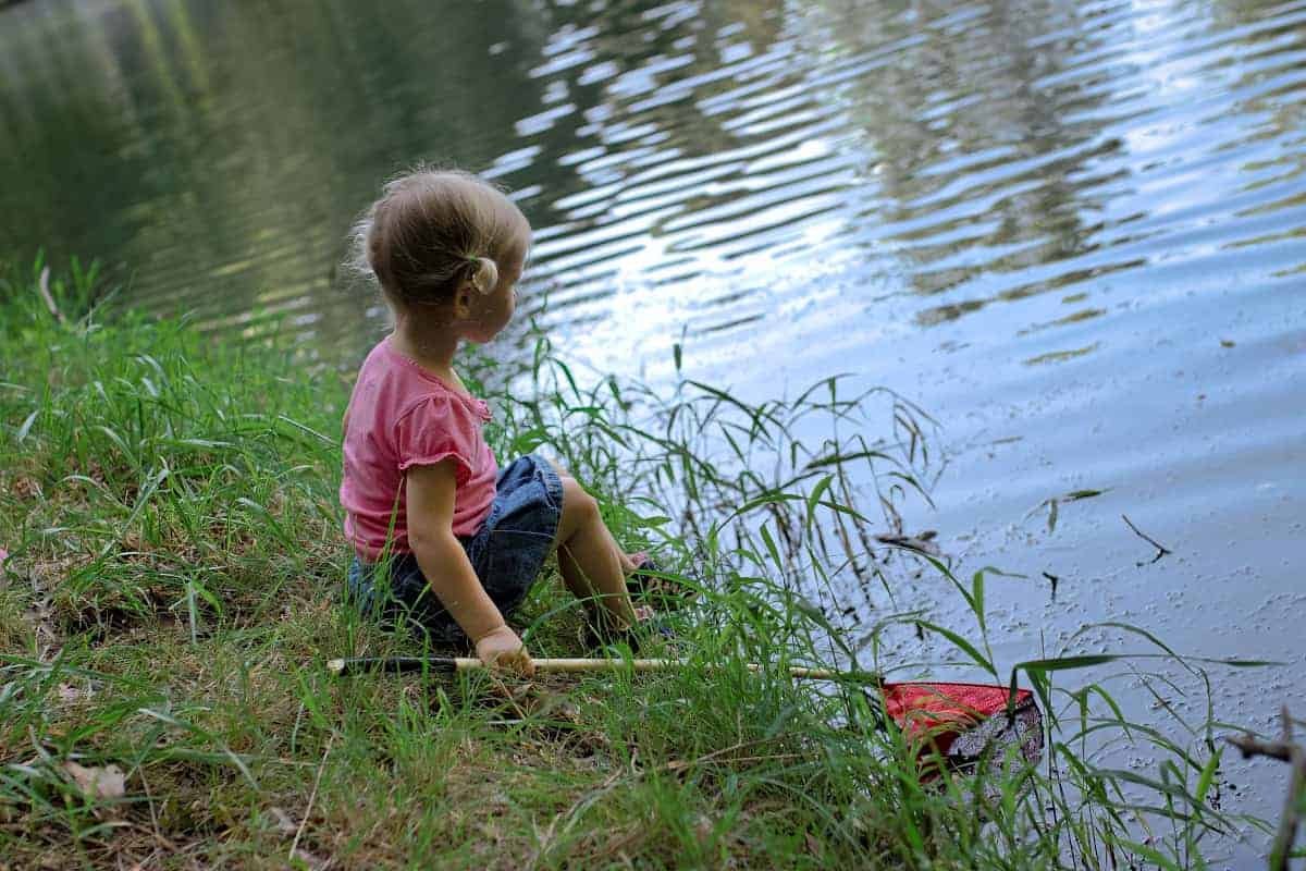 Nature Study: Exploring Ponds with Kids • RUN WILD MY CHILD