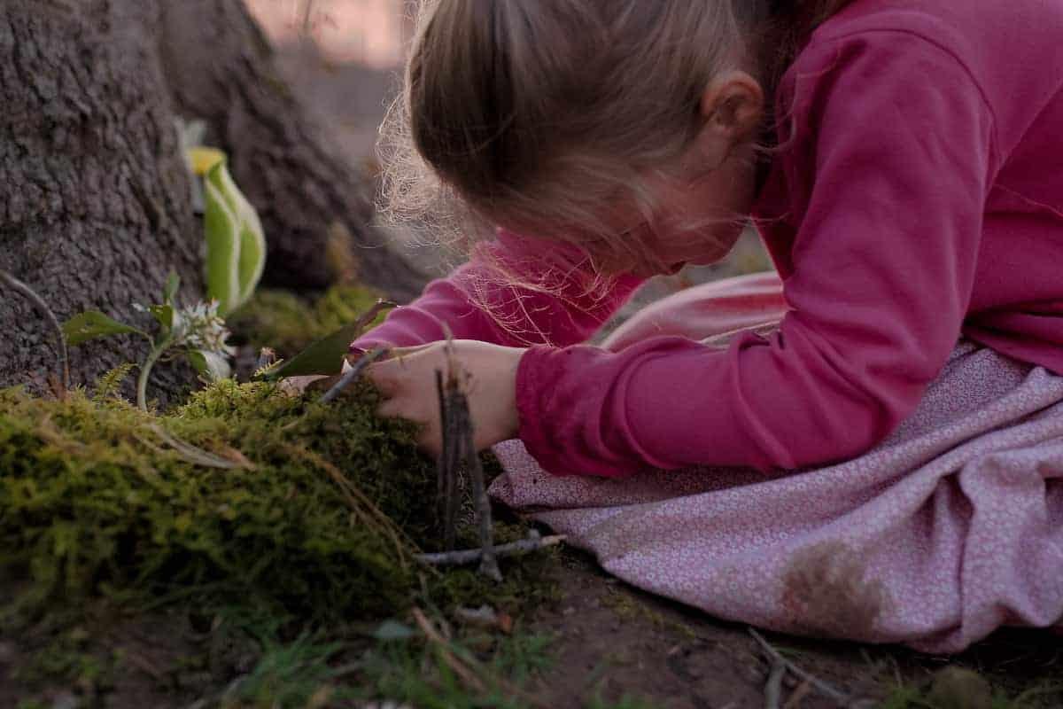 Creating Nature Fairy Garden 4