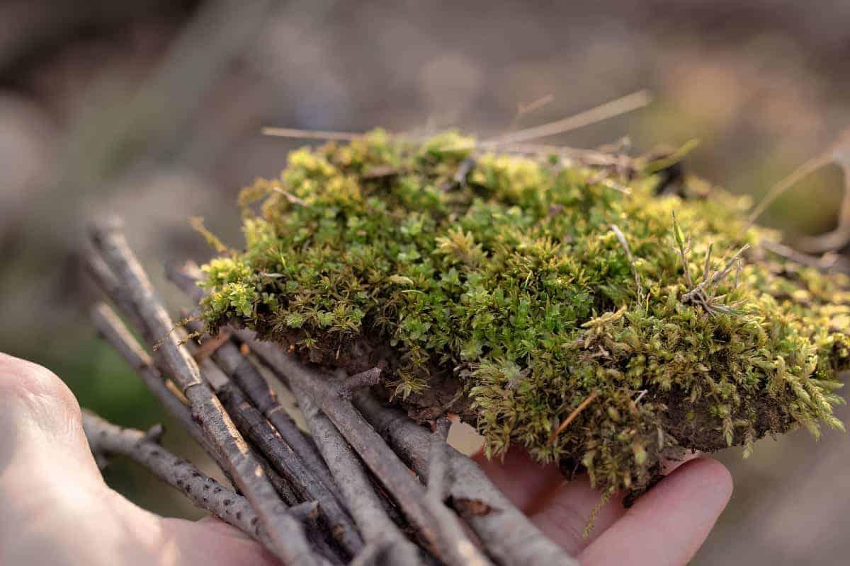 Nature Fairy Garden Materials