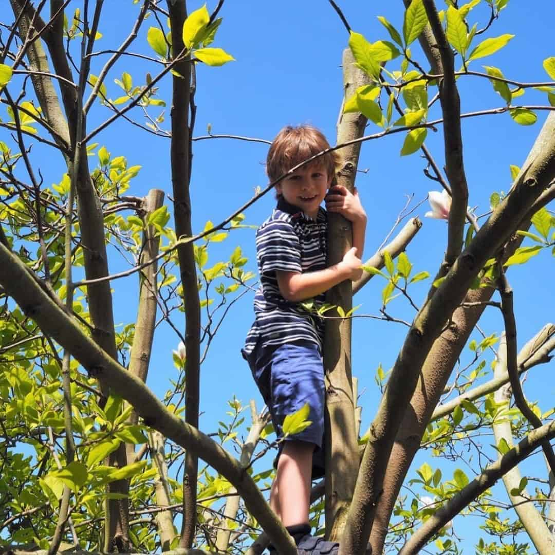 creating outdoor play spaces for kids
