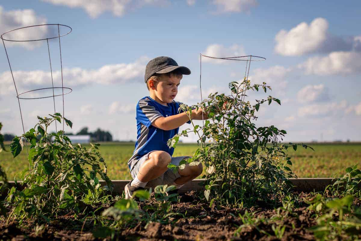 Exploring the outdoors with medically-complex children - backyard gardening
