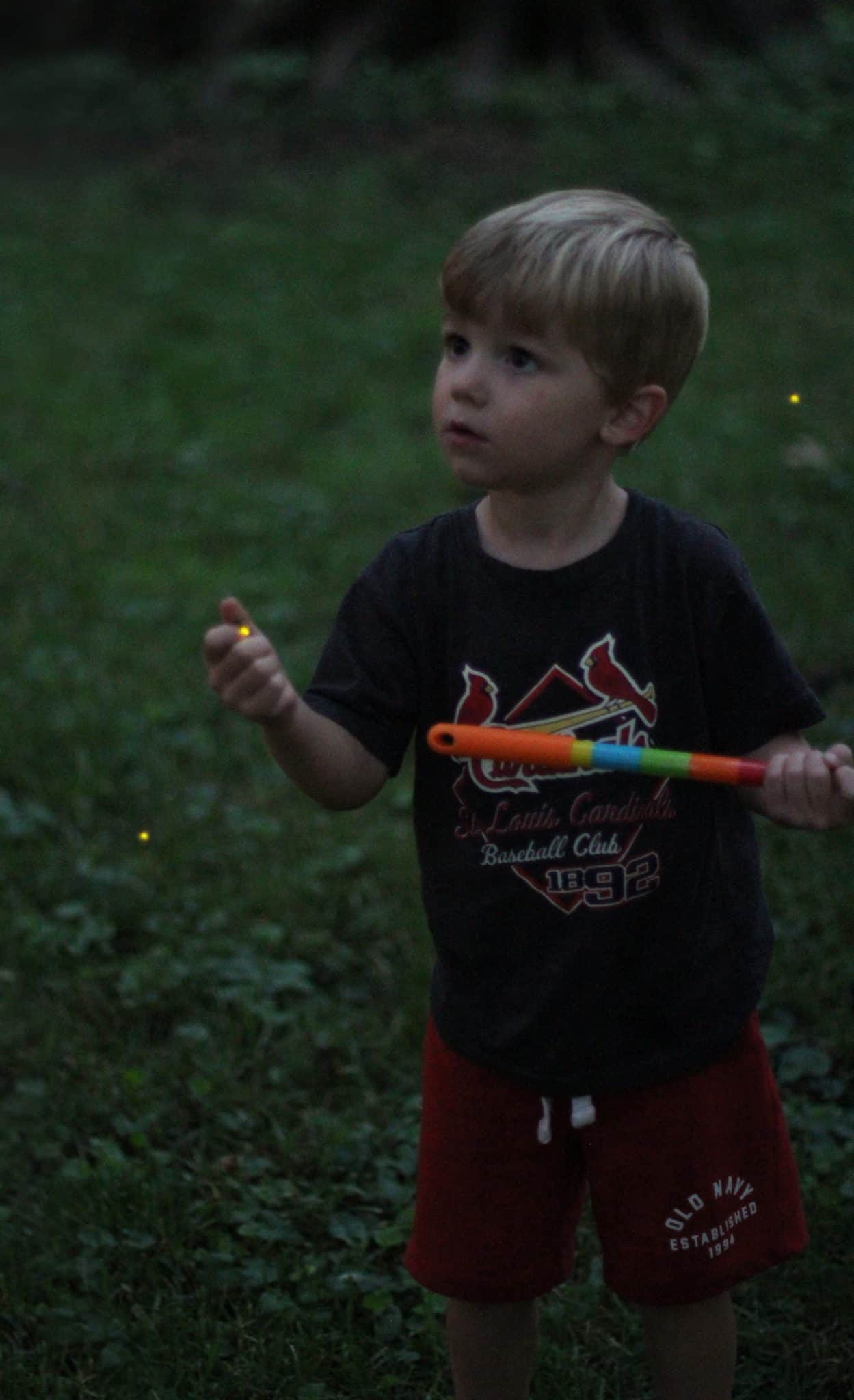 learning about fireflies with kids