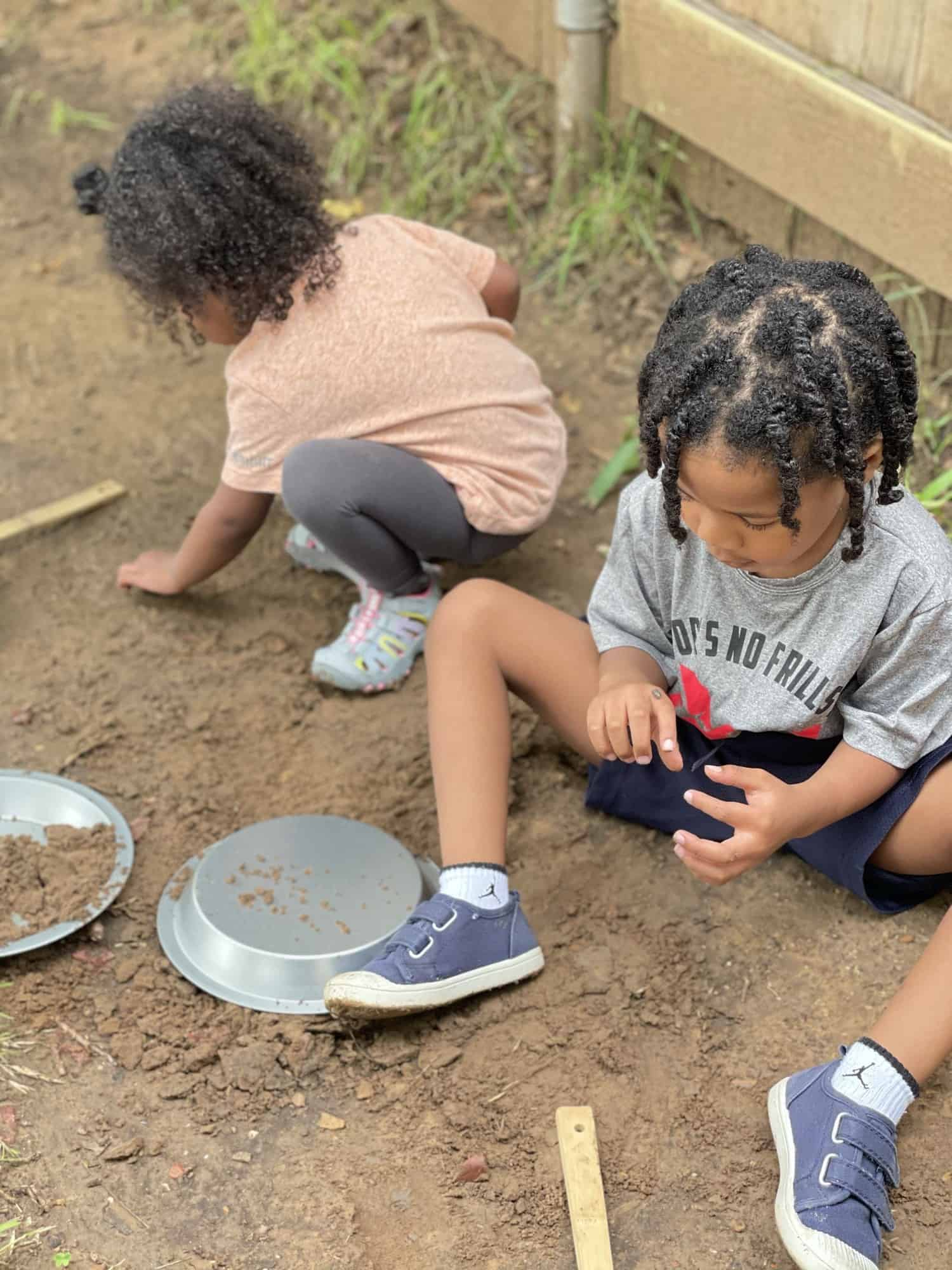 Playing with Bugs - finding nature in your own backyard