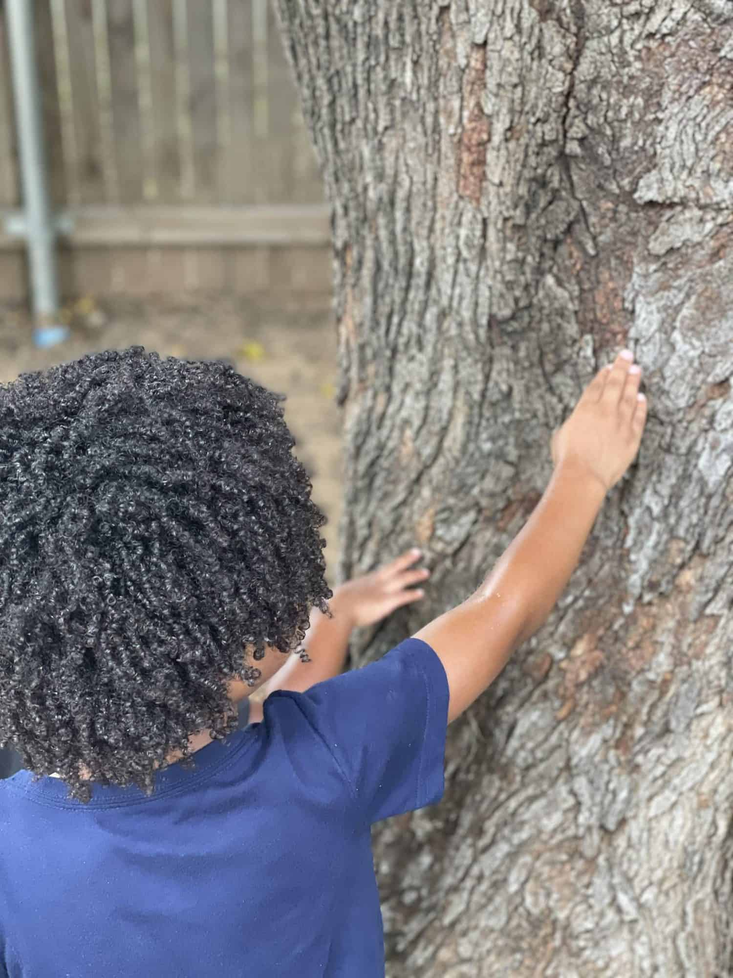 Learning About Trees with Kids