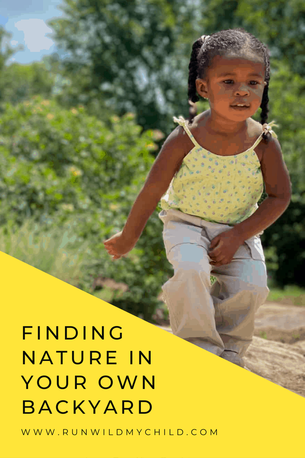 FINDING NATURE IN YOUR OWN BACKYARD