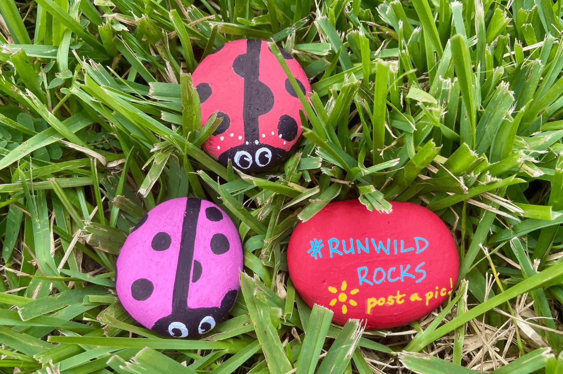 painted ladybug rocks and #runwildrocks painted rock