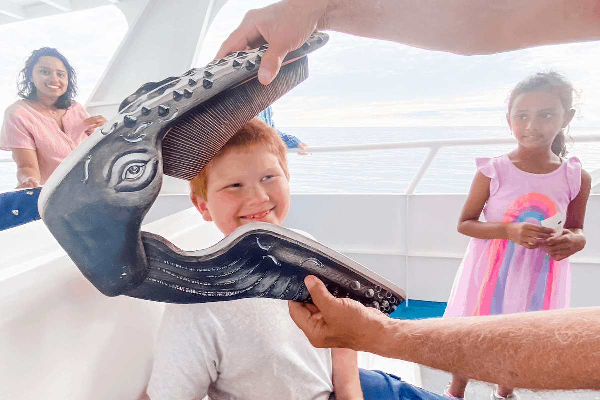 cape cod adventure whale watch kids humpback