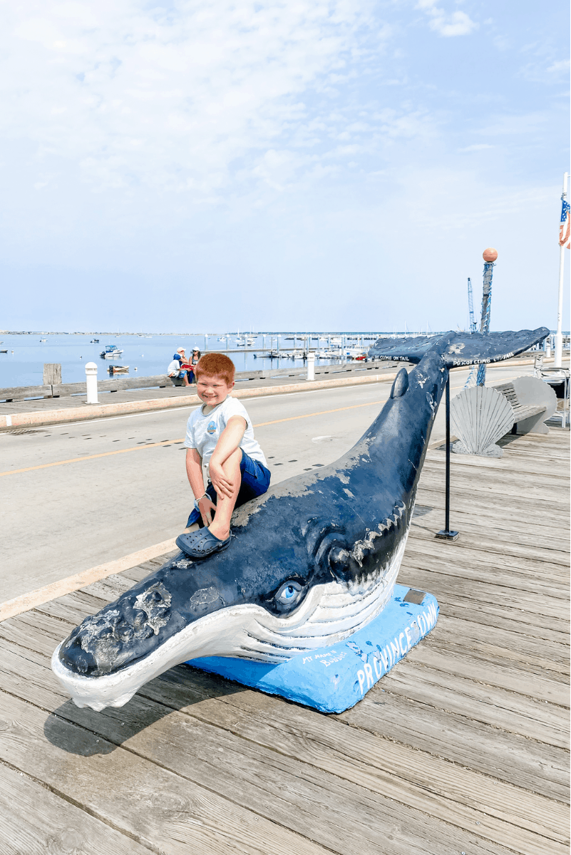 whale watch kids humpback whale provincetown cape cod vacation