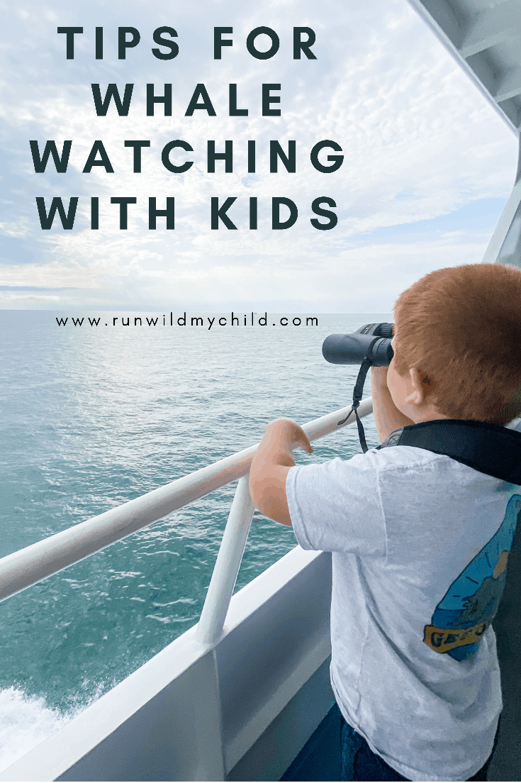 Tips for whale watching with kids